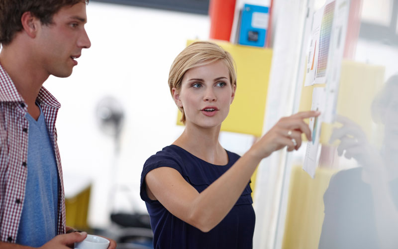Program Management Professional (PgMP) Training Course   Project Management Training Course